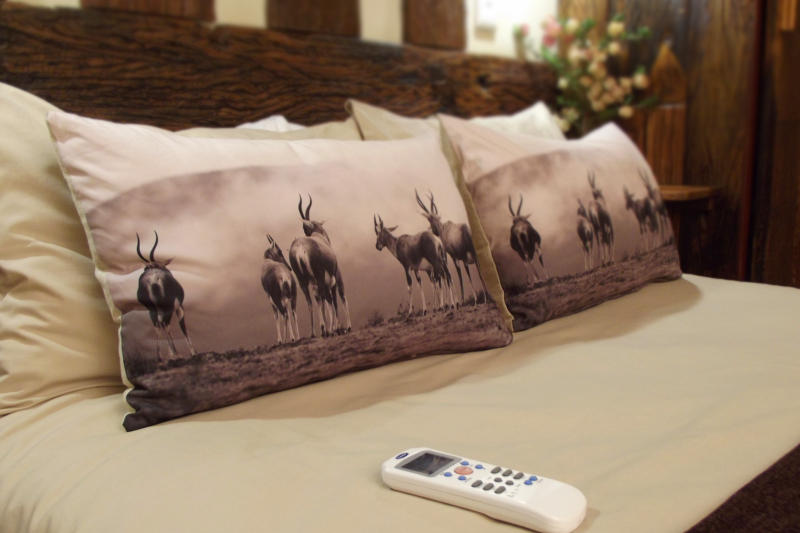 Airconditioned rooms themed with wildlife